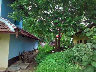6 Cent Plot With Traditional House For Sale in Palakkad