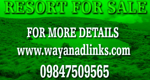 Resort in 4 Acre Land with 12 Rooms  for Sale in Wayanad