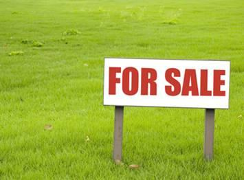 80 Cents Land for sale and located 14 Km from Sultan Bathery Wayanad