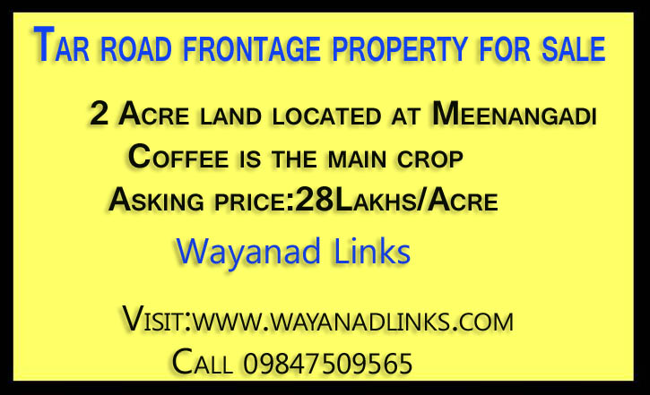 Tar road frontage property for sale Meenangadi Wayanad