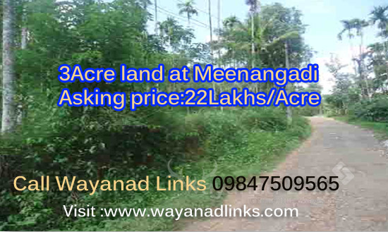 3 Acre Land For Sale at Meenangadi ,Wayanad