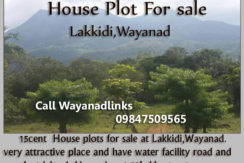 House plot for sale in Lakkidi Wayanad