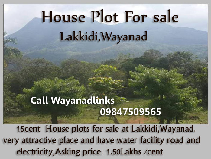 15 Cent House Plots for Sale at Lakkidi , Wayanad