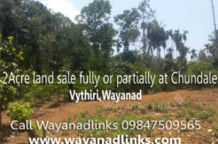 2 Acre Land for Sale as Single or Multiple Plots at Vythiri , Wayanad