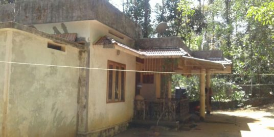 27 cents Plot With  House for Sale in Oravakal, Kottayam