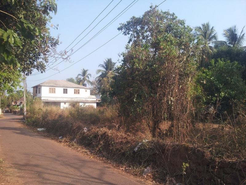 Residential Plot For Sale: 0.5 kms from Taliparamba Main Bus Stand