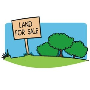 40 Cent Plot for Sale at Koleri Wayanad. Price:45000/cent.