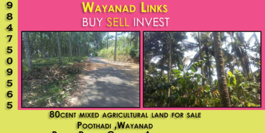 80 Cents Agricultural Land for Sale at Poothadi ,Wayanad