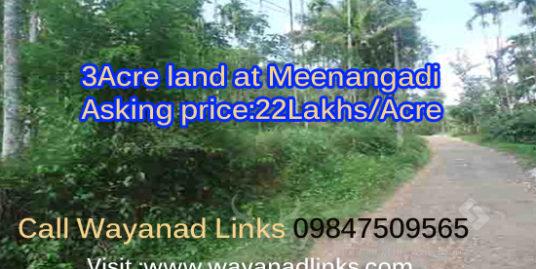3 Acre Land For Sale at Meenangadi ,Wayanad