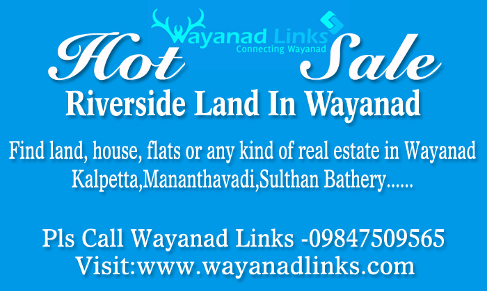 2 Acre 25 Cents Land with House for Sale in Nadavayal, Wayanad