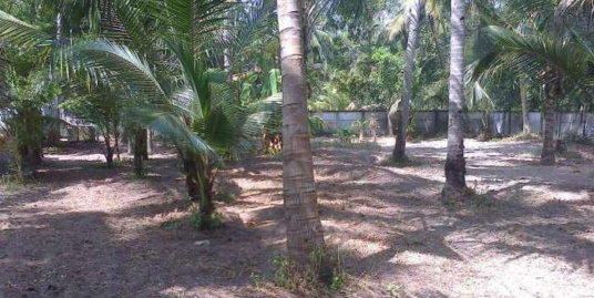 17 Cent Residential Land for Sale in Munnamkutty,Kayamkulam,Alappuzha