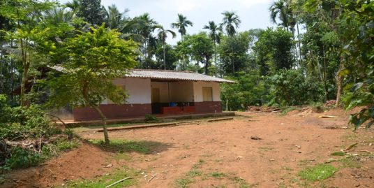 3.2 Acre Water Front Road Side Land for Sale in Panamaram, Wayanad