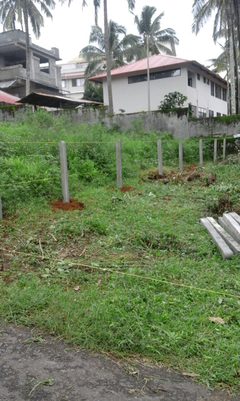 8 Cent Square Plot for Sale in Ambalavayal, Kalpetta, wayanad