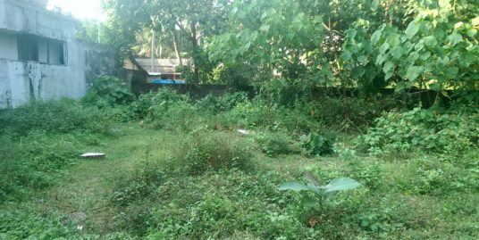 10 Cents Residential Square Plot  for Sale at Chitrapuzha, Irimpanam