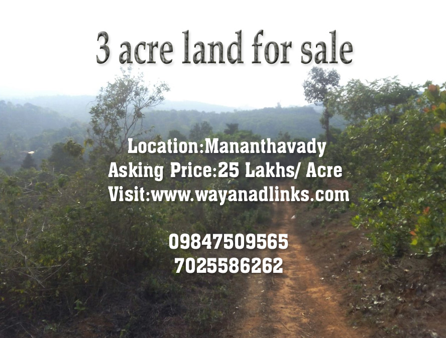 3 Acre Land for Sale for 25 Lakhs INR per Acre at Mananthavady, Wayanad