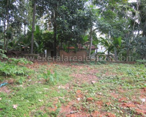 18 Cent Plot for Urgent Sale Near Chathannoor, Kollam Kerala