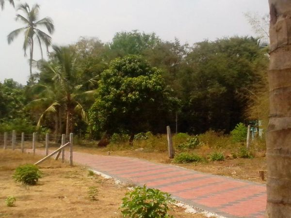 5 Cents, 7 Cents, 10 Cents Residential Plots For Sale at Kottayi, Palakkad