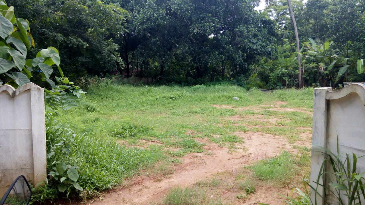 8 Cent land for Sale at Mundur, Thrissur