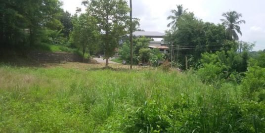 50 Cents Commercial Cum Residential Land for Sale at Vadanamkurussi, Palakkad – Ponnani Highway