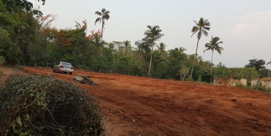 45 Cents Residential Land For Sale at Pathiripala, Palakkad