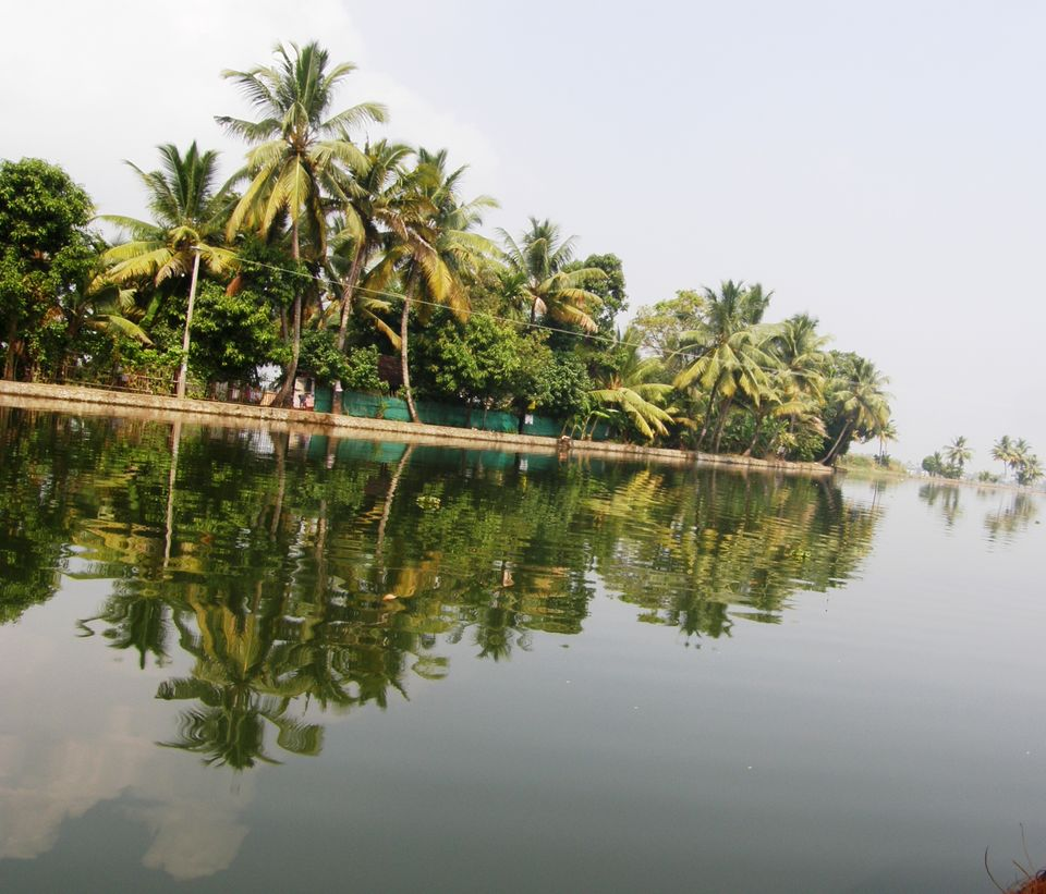 Land Suitable for Resort for Sale in Vembanadu Lake, Kumarakom