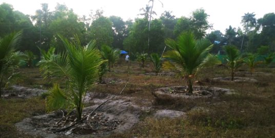 4 Cents Land For Immediate Sale With Very Cheap Price at Cherthala, Alappuzha