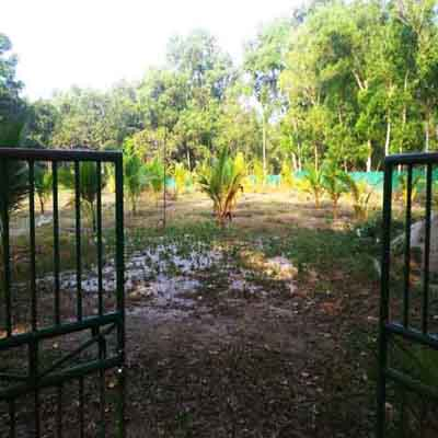 107 Cents Residential/Commercial Plot for Sale Near NH 66 Alappuzha