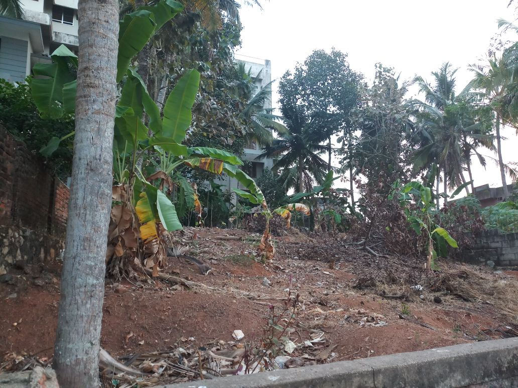 10 Cents, Navodaya Gardens For Sale Near Pananvila Junction, Thiruvananthapuram