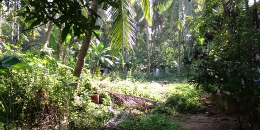 33 Cent Plot for Sale in Uroob nagar ,Arya Nagar, Ponnani Malappuram