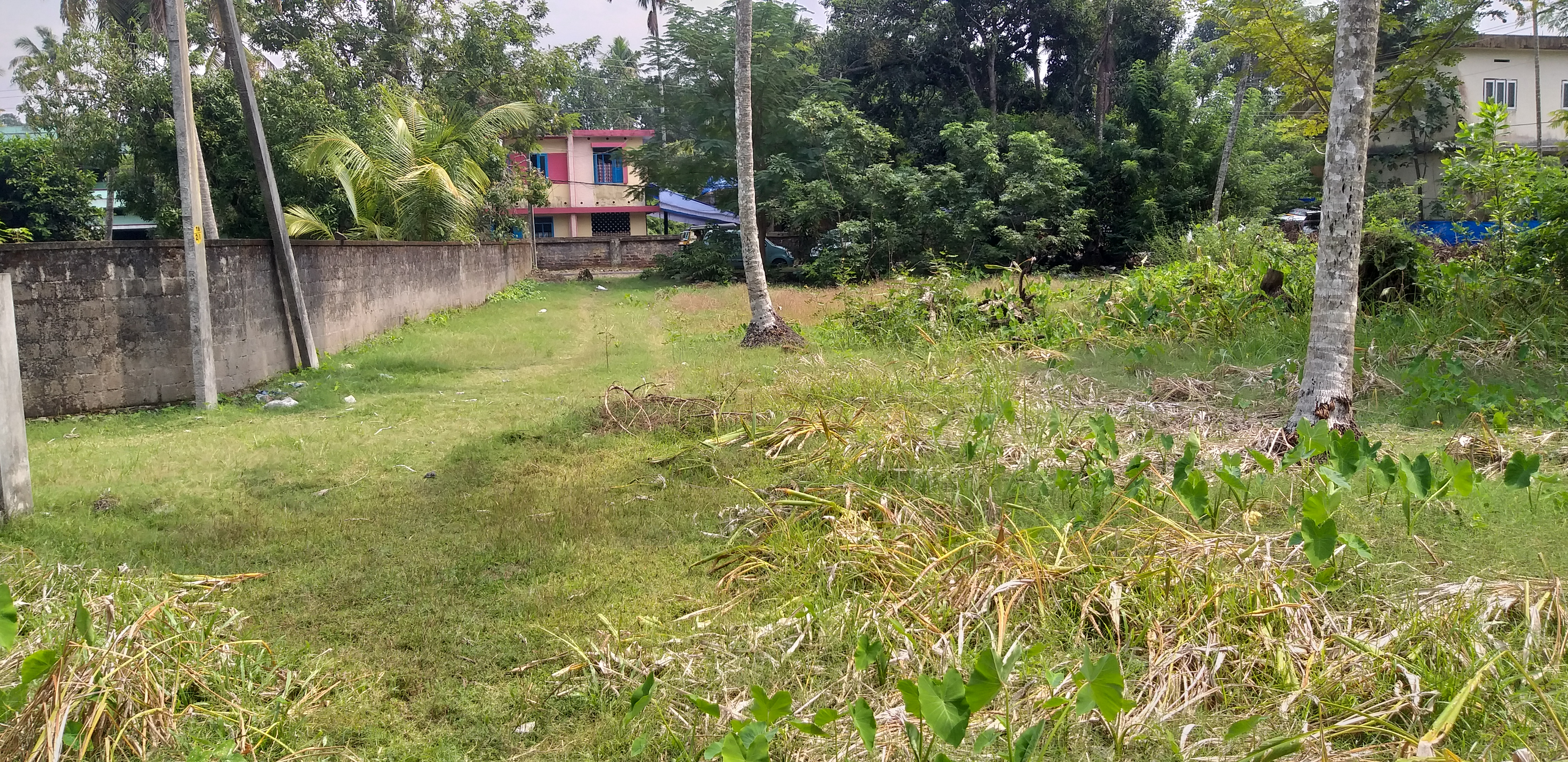 Residential Land for sale in Thonnyakavu, North paravoor, Ernakulam
