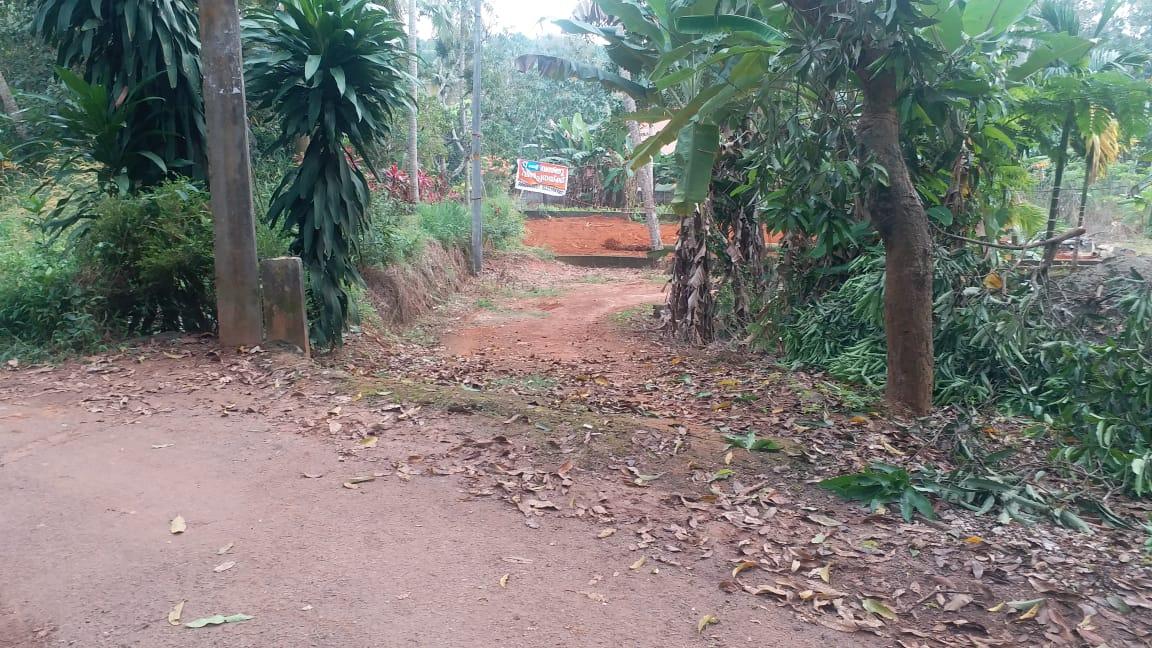 11 Cent Square Plot at Vadasserikkonam, Varakala for 1.9 Lakhs per Cent