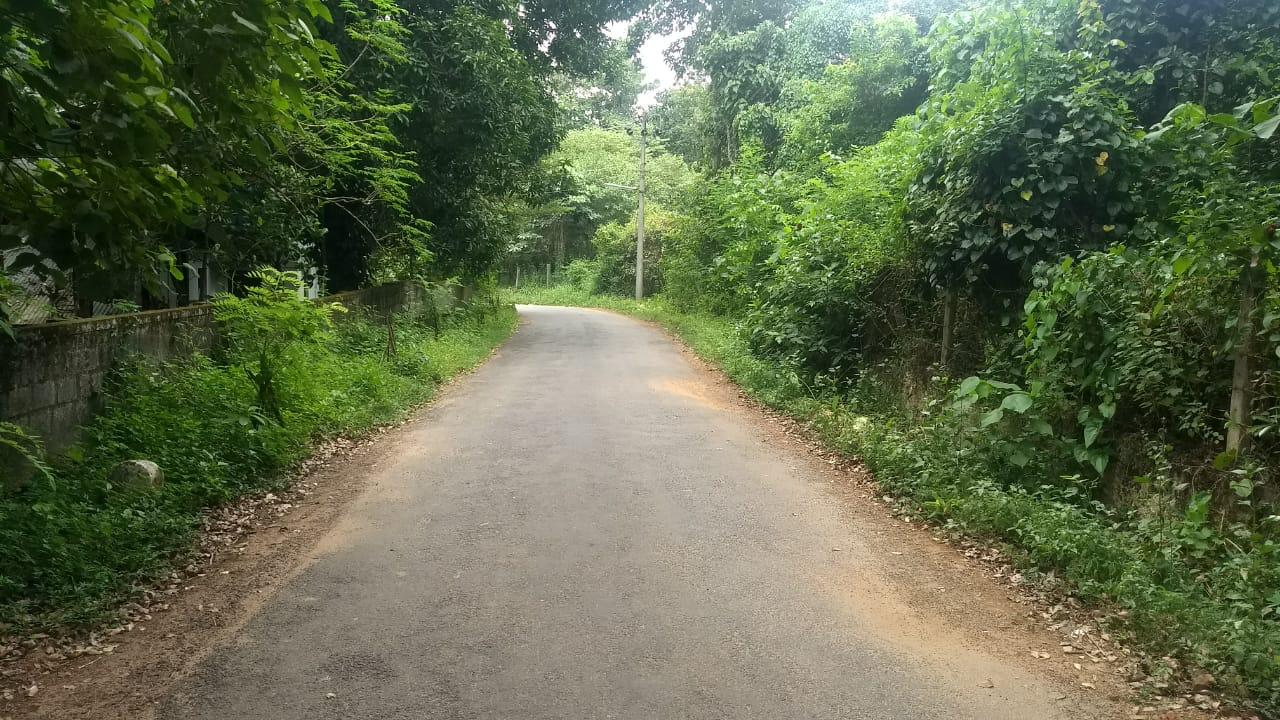 38 Cents Plot For Sale Near Manitara Community Hall Thrissur (Part/Full Sale)