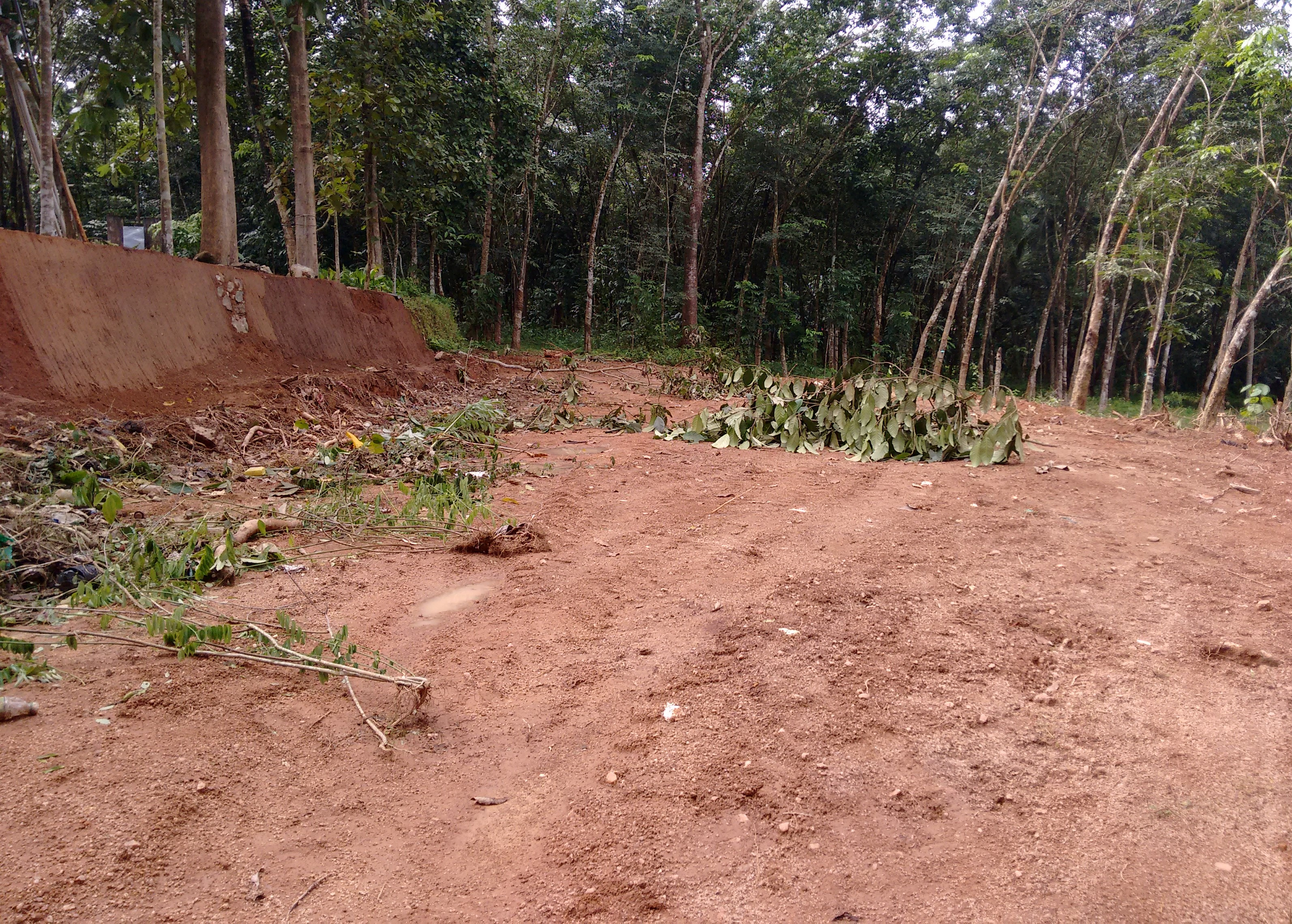 10 Cent Land for Sale Near Thevalappuram, Parayil Jn. Puthoor