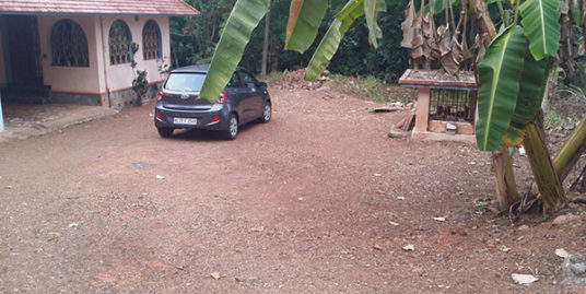 42 cents of land with single floor traditional house  for sale at Kidangannoor, near St. Thom Marthoma Church.