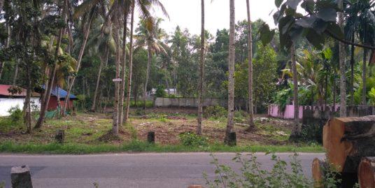 30 Cents Land For Sale at Eruva,  Kayamkulam