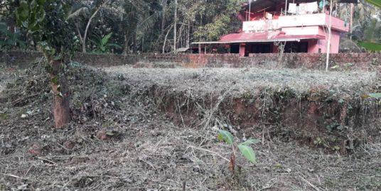 Prime Residential Plot for sale at Kalliasery , Kannur