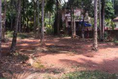 16.25 Cents Residential Plot for Sale Near Hosangadi,  Manjeshwar