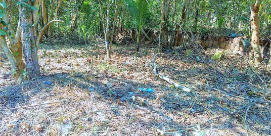 30 Cents Land for Sale at Mundayad, Kannur
