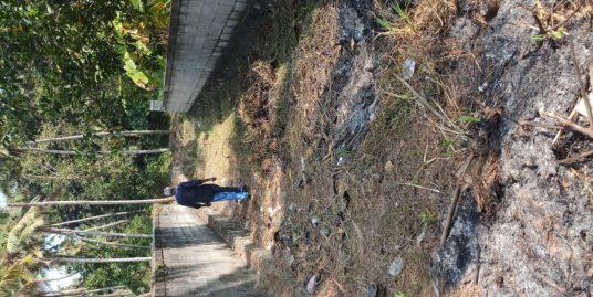 6.5 cents of Residential land in Pongummoodu, Archana Nagar, Trivandrum