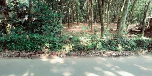 15 Cent plot for sale , 3 Lakhs Per Cent , 4 Km from Vazhakulam