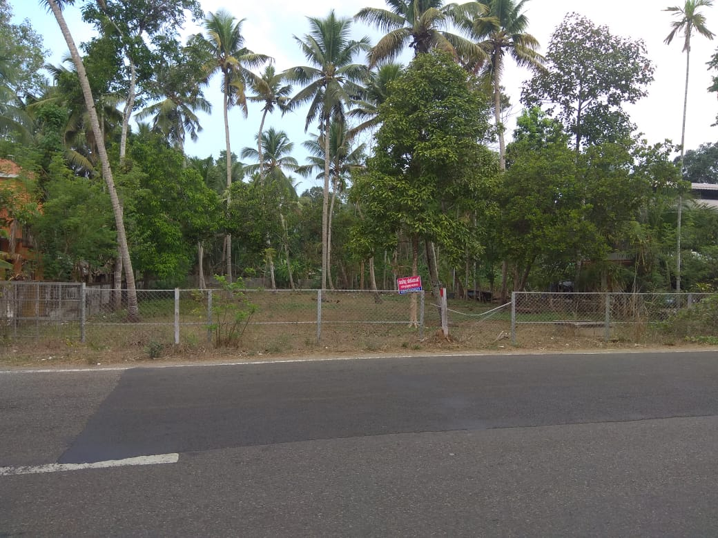 31 Cents Plot for Sale at Haripad