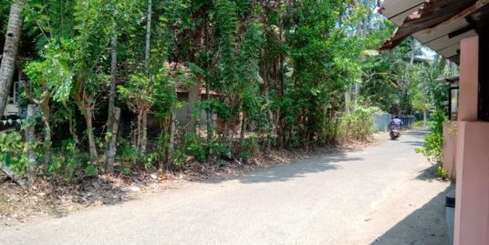 34 Cent plot with house for sale in Karunagappally