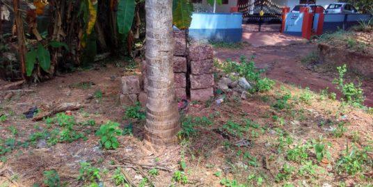 6.94 Cent Residential Land For Sale In Vadakara Municipality, Kozhikode