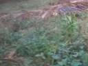 Plot 12414 sq ft along with house and well for sale at Tanur, Kerala