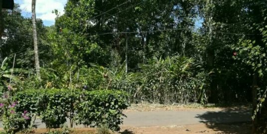 16 Cents Land for sale in Munnar Bison Valley