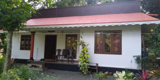 3BHK New House with 12 Cent Plot For Sale Near South Pampady, Kottayam