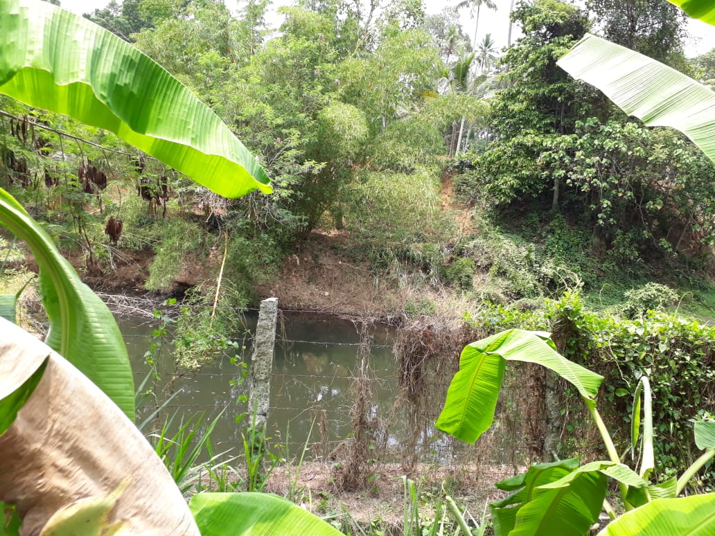 20 Cents River side plot for sale at Thirumala, Thiruvananthapuram