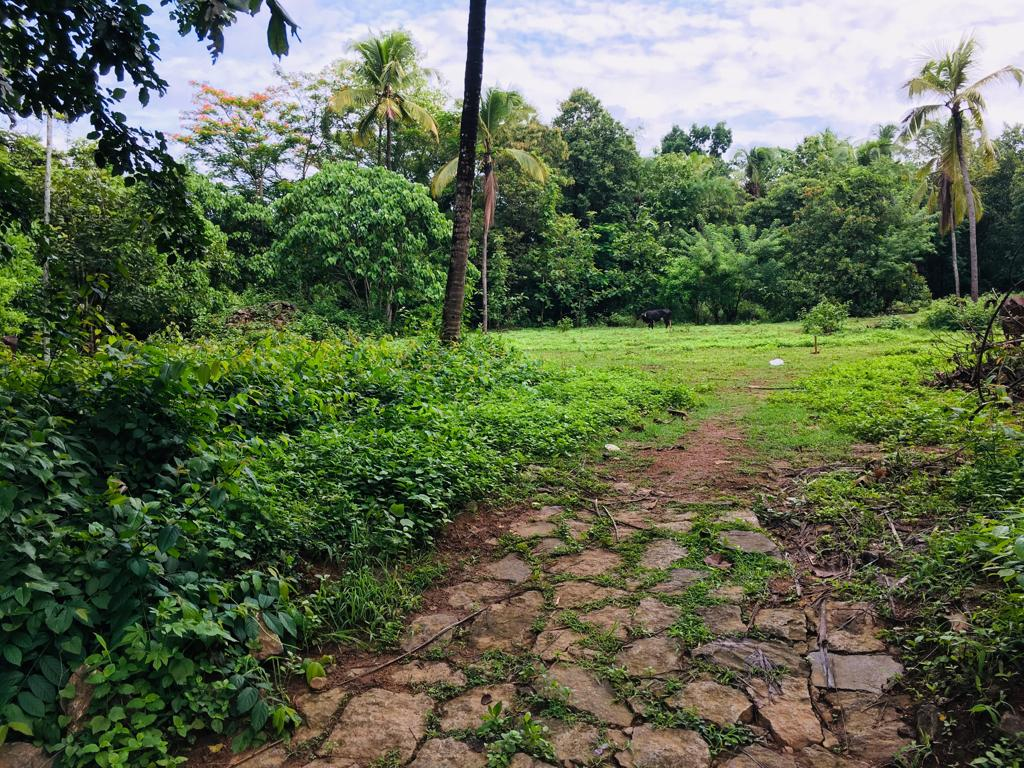 land for sale in kailiad