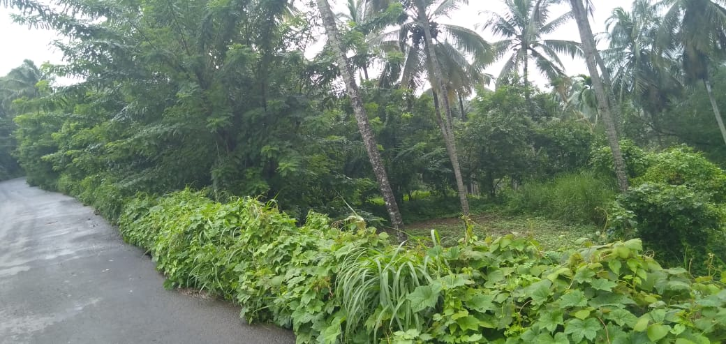 Land for Sale at Mini ooty- 1 Acres 51 Cents