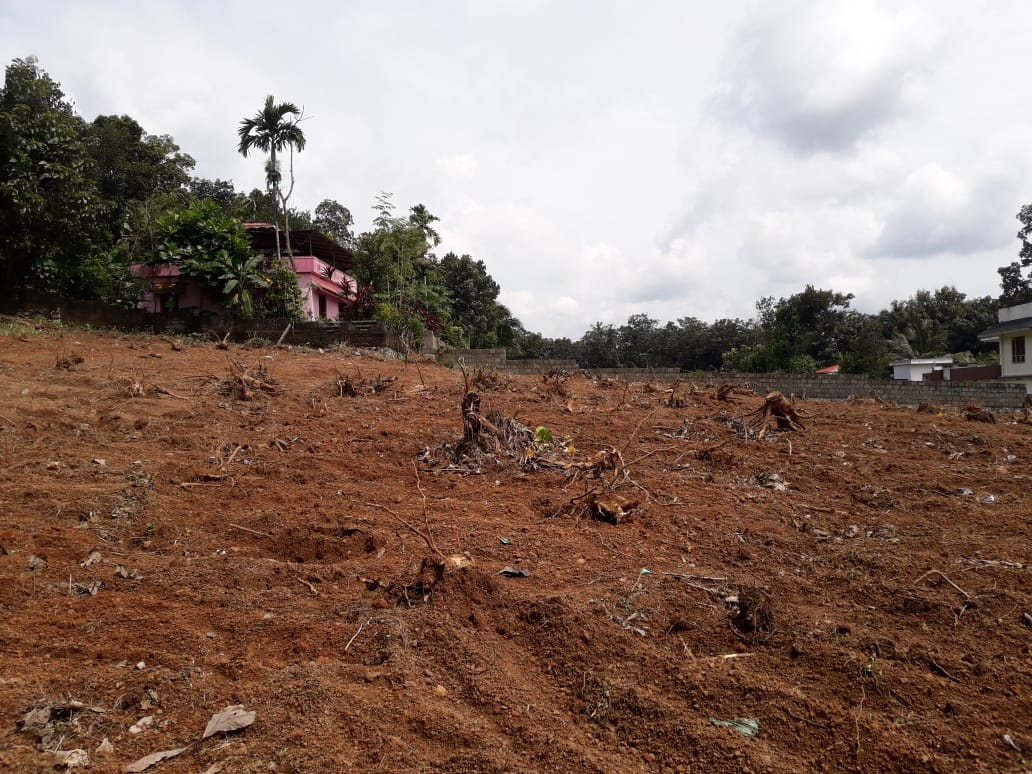 5.15 acre of Land for sale in Adoor Muncipality area, Rs90000 per cent ,Thatta-pathanamthitta road
